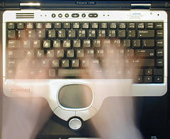 Crédit Flickr user striatic